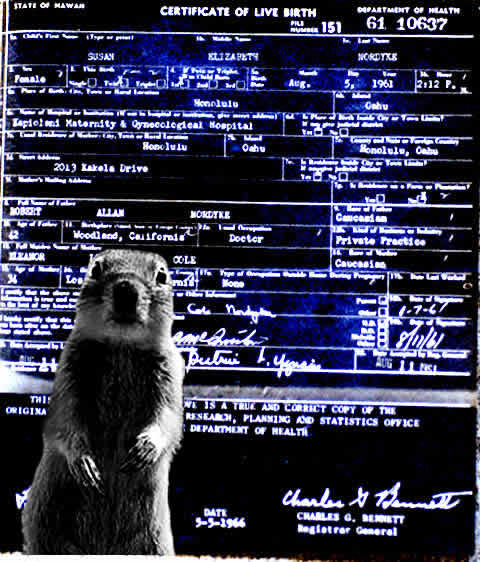 Squirrel In Front Of A Long-Form Birth Certificate From The State Of Hawaii