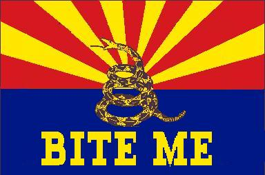 The New Arizona State Flag