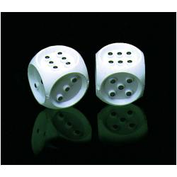 Braille Dice