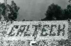 The Great Caltech Rose Bowl Flip Card Hoax of 1961